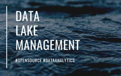 Meetup: How to Collaborate with Data Lake Management Communities